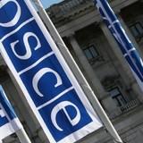 """OSCE chưa """"bắt quả tang"""" người hay vũ khí từ Nga sang Ukraine"""