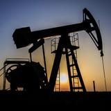 Chuyên gia Iran: IS khiến giá dầu thế giới sụt giảm