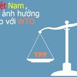 Hầu hết luật pháp Việt Nam đã tương thích với cam kết trong TPP