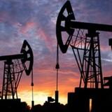 """Giới đầu cơ đặt cược """"canh bạc"""" giá dầu sẽ trở lại mốc 80 USD/thùng"""