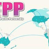 Doanh nghiệp 24h: Ngành nào hưởng lợi nhiều nhất từ TPP?