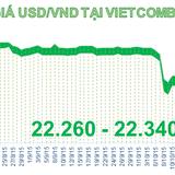 Sáng 24/10: Đồng USD tăng giá mạnh trở lại