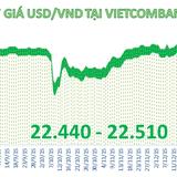 Tỷ giá trung tâm đứng yên, ngân hàng giảm mạnh giá USD