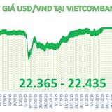 """Tỷ giá trung tâm """"đứng yên"""", ngân hàng vẫn  giảm giá USD"""