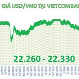 Tỷ giá trung tâm quay đầu giảm, ngân hàng vẫn tăng giá USD