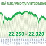 Tỷ giá trung tâm quay đầu tăng nhẹ, ngân hàng tăng giá bán USD