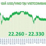 Tỷ giá trung tâm quay đầu giảm, ngân hàng tăng nhẹ giá USD