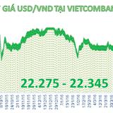 Tiền đồng tăng giá phiên thứ 2 liên tiếp