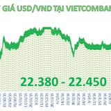 Tỷ giá trung tâm tăng 12 đồng, Techcombank giá USD tăng tới 100 đồng