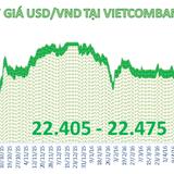 Tỷ giá trung tâm đứng yên, ngân hàng đồng loạt giảm giá USD