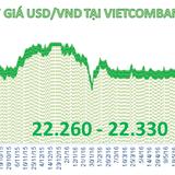 Tiền đồng giảm giá phiên thứ hai liên tiếp