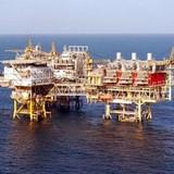 GAS: Lợi nhuận giảm mạnh, tiền mặt chiếm gần 30% tổng tài sản