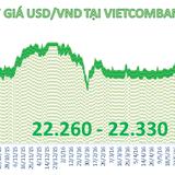 Tiền đồng tăng giá mạnh so với USD