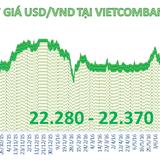 Tỷ giá trung tâm tăng nhẹ, Vietcombank bất ngờ tăng mạnh giá bán USD