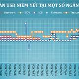 Tỷ giá trung tâm quay đầu giảm, ngân hàng đồng loạt tăng giá USD