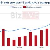 """Hàng loạt khoản nợ được gia hạn, cổ phiếu HAG thành hàng """"nóng"""""""