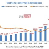 Vietnam External Debt Mounts to $65.5 Billion in 2013, 40.2% of GDP
