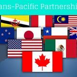 TPP Will Make Vietnam More Efficient: U.S. Economist