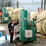 IFC, Singaporean PE Fund to Invest in Vietnam Hydropower Developer
