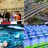 [Round-up] Vietnam, French Biz Enhance Links, Dragon Capital Plans Vinamilk Divestment