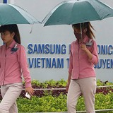Samsung Strives to Include More Vietnamese Firms into Supply Chain