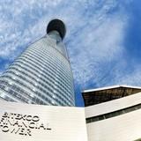 TP.HCM: Công suất thuê văn phòng cao nhất 7 năm qua