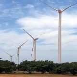 """Ninh Thuận """"trảm"""" loạt dự án bất động sản và điện gió"""