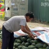 """Nhiều điểm dưa hấu ở Hà Nội bán """"dưa hấu Sài Gòn"""""""