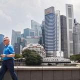 """Sự """"nhảy vọt"""" của đô la Singapore từ điều chỉnh của MAS"""