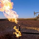 Quỹ đầu tư mất niềm tin vào giá dầu