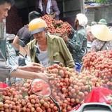 Nông sản lao đao vì thiếu thông tin