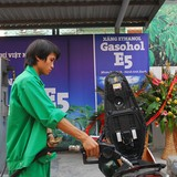 Chuẩn bị điều kiện để phân phối xăng E5 trên toàn quốc