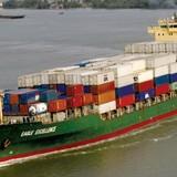 """Vận tải biển Việt Nam: Thiếu tàu lớn khó ra """"biển lớn"""""""