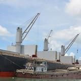Việt Nam bắt đầu phải nhập khẩu quặng sắt quy mô lớn