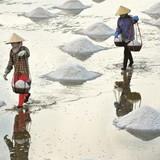 """Tái cơ cấu: """"Phép màu"""" nào kéo giảm nhập khẩu muối?"""