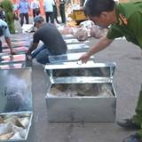 750 kg sừng tê giác, ngà voi nhập lậu qua cảng Tiên Sa
