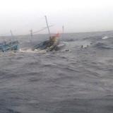 Cục Hàng hải điều tra vụ tàu cá Bình Thuận bị đâm chìm