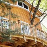 Nhà gỗ 3 tầng trụ vững trên cây