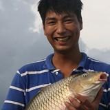 Bỏ mức lương cao về quê nuôi cá, thành tỷ phú cá giòn ở tuổi 27