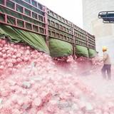 Nhà máy đốt tiền tạo ra điện ở Trung Quốc