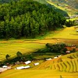 Việt Nam lọt top 6 quốc gia an toàn cho du khách