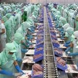 Vì sao nông sản Việt Nam mất giá?
