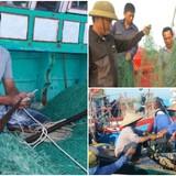 """<span class='bizdaily'>BizDAILY</span> : Ngư dân tiếp tục """"tố"""" tàu cá Trung Quốc gây rối, phá hoại"""