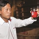 Thương hiệu Việt ra nước ngoài: Đừng đợi mất bò...