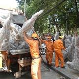 Hàng trăm cây đào tết trị giá mấy trăm triệu bị nghiền nát trên xe rác