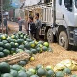 """Làm ăn với Trung Quốc: Soi những ngành chịu """"thiệt đơn - thiệt kép"""""""