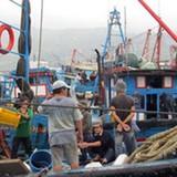 Yêu cầu thu mua hết thủy sản đánh bắt xa bờ cho ngư dân