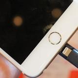 USB giúp tăng bộ nhớ lưu trữ cho iPhone