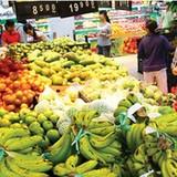 Tỷ giá đã gây bất lợi kép cho nông sản Việt xuất khẩu