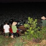 Trà cổ Hà Nội giá 7 triệu/kg ướp từ sen có gì đặc biệt?